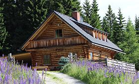 Die Geierkogelhütte